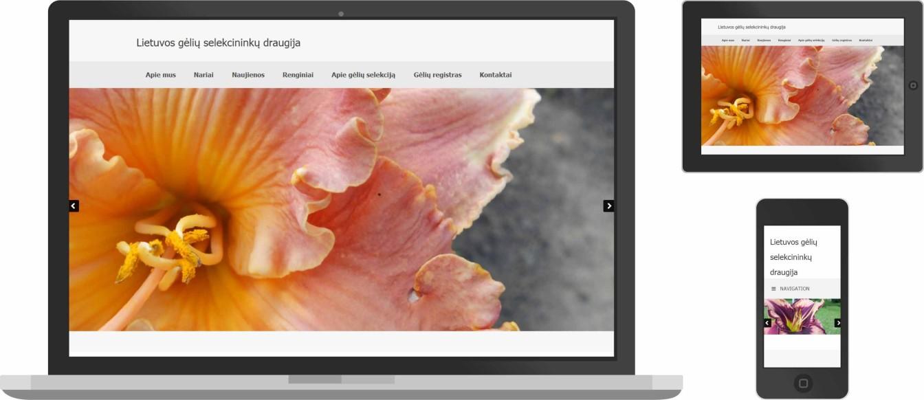 Web dizainas, gėlininkai