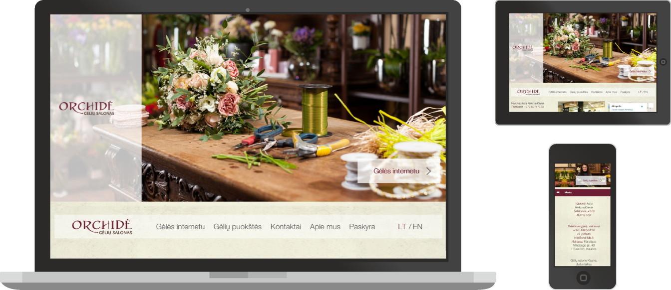 Orchide, web dizainas