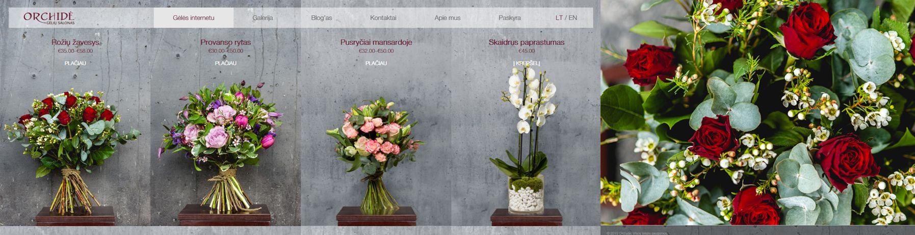 El. parduotuviu kurimas, orchide.lt