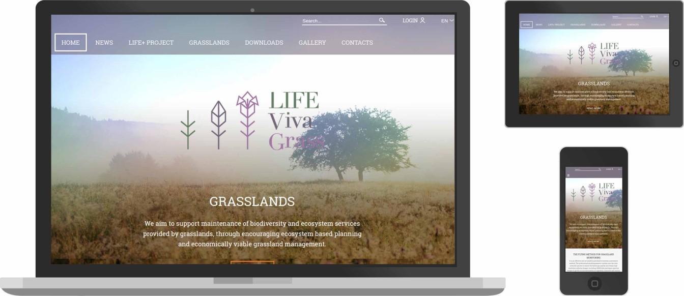 web dizainas, vivagrass