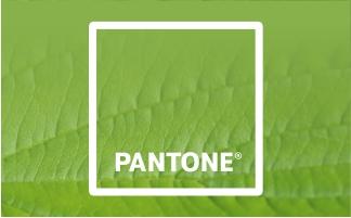 "pantone spalvu institutas ir metu spalva ""Greenery"""