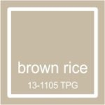 "Pantone spalva ""Brown rice"""