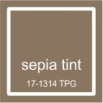 "Pantone spalva ""Sepia tint"""